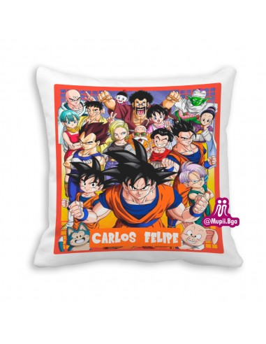 cojin dragon ball z personalizado